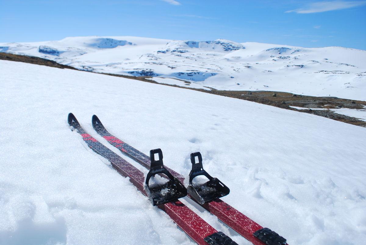 På ski fra Finse er flott.