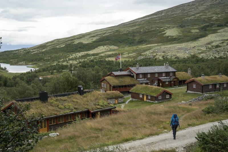 Bjørnhollia