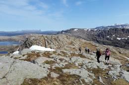 På veg nedatt kan du nyte utsikta nordover der Hornelen med sine 860 moh skil seg godt ut. - Foto: Arnfrid Bergheim