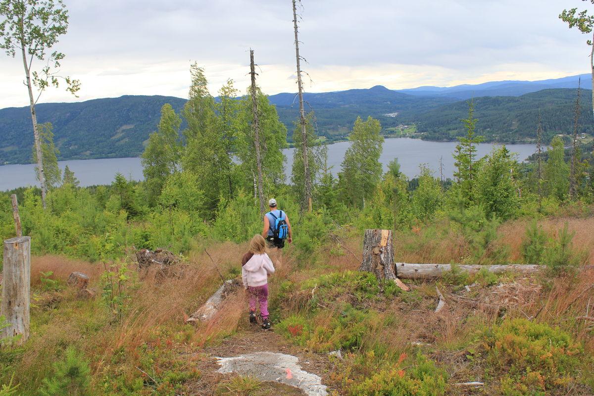 På vei ned lia er det fin utsikt mot fjorden og gårdene på østsiden.
