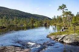 Elva ut av Ankeresvatnet - Foto: Kjell Fredriksen