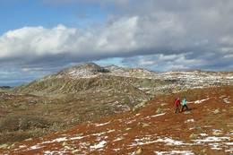 Utsikt mot Gråfjell 1466 m.o.h. i nord, Norefjells høyeste fjelltopp.  - Foto: Hilde Roland