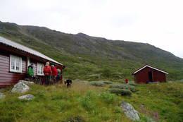 Yksendalsbu - Foto: Hilde Løken Magnussen