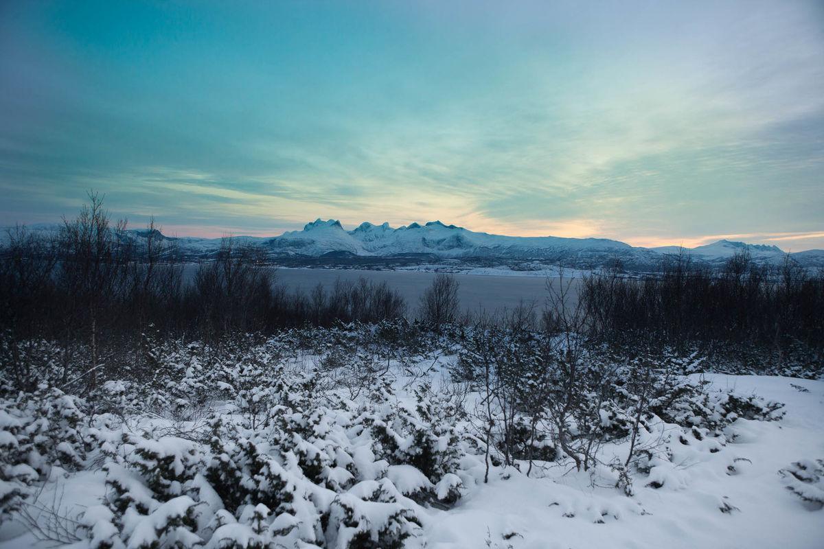 Utsikt fra toppen i februar