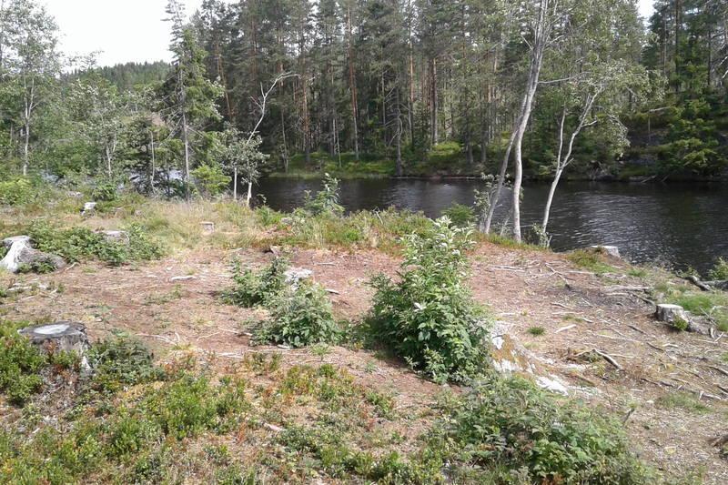 Telt og badeplass ved Fløyta i Eidsvoll