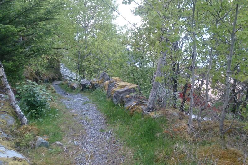 Idyllisk sti opp fra Vingsand. Trapp i bakgrunnen.