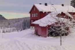 Solvang ved Garsjø -  Foto: Einar Vestnes