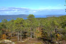 Utsikt ved Fjellhov - Foto: NTT