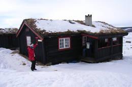 Storhøliseter  - Foto: Marianne Rønning