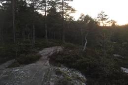 Litt flatt, før siste stigning. - Foto: Einar Vestnes