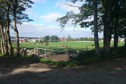Prestegårdsveien utsikt mot Stangeland, Gand og Sandve - Foto: Anette Hauge