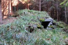 Bakkemo. Høyt oppe lå jordkjeller og hustufte... - Foto: Laila Lindberg