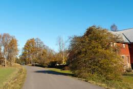 Skåneveien mot Nykirke. - Foto: Ukjent