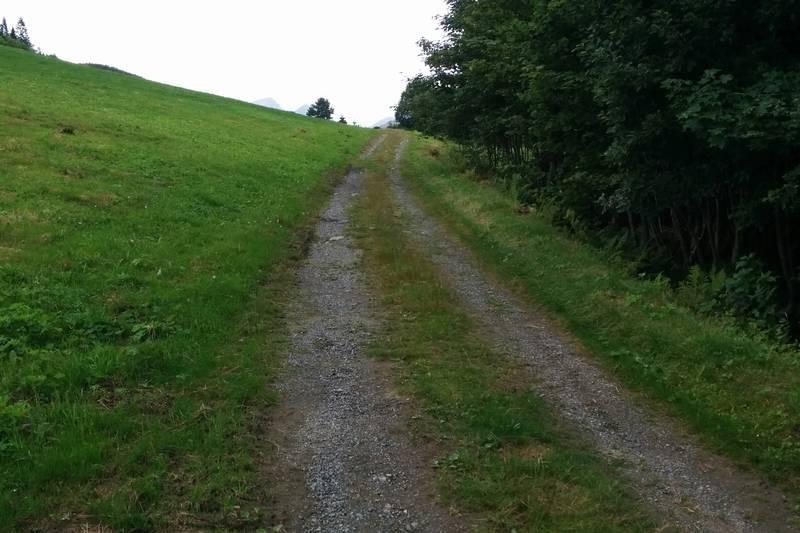 Postvegen over innmarka på Gjerde