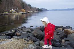 Liten pike i fjæra i Frebergsviken -  Foto: Ukjent
