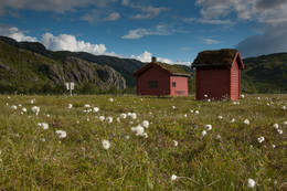 Kvanndalen  - Foto: Maaike Knol