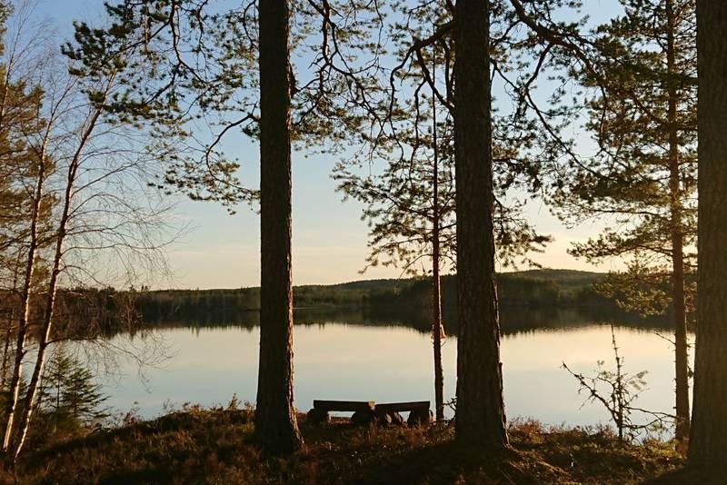 Rundtur om Vellumstad og Gjetholmsjøen