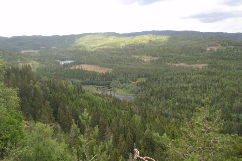 Utsikt fra Stuteskallen mot Lysedammene og Andtjernåsen.