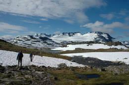 Stien fra Sognefjellshytta mot Fannaråken - Foto: Helle Andresen