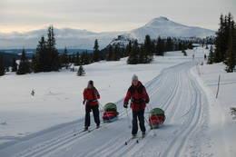 Super gli med pulk og ski - Foto: Helle Andresen