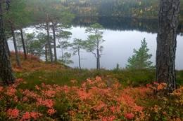 Utsikt over Leirsjøen -  Foto: Karl Arne Melbye