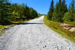 Veien opp til Junkerfjellet - Foto: Tursiden for Bodø og Salten