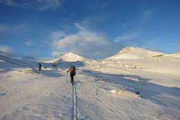Halsbekkdalen -  Foto: Oddveig Torve