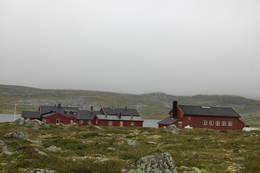Krækkja  - Foto: Kari Merete Horne