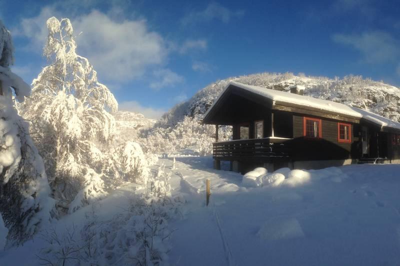 Ådneram anneks ligger sentralt til i Ådnaram nær vei, skitrekk og skiløyper