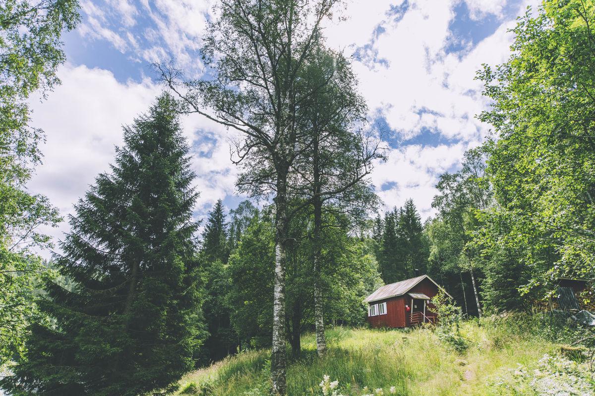 Røyrivannskoia er en gammel tømmerkoie