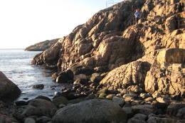 På farlige steder langs kyststien er det satt opp rekkverk til å holde seg i. - Foto: Floke Bredland