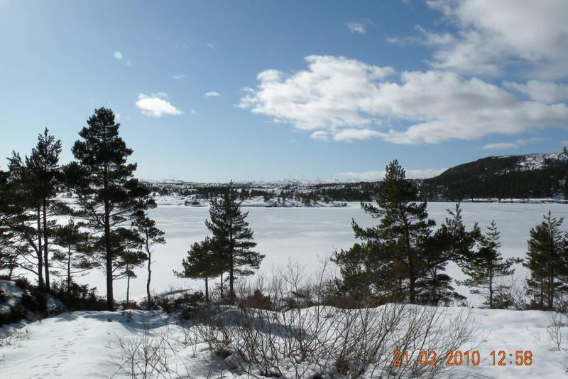 Vinter ved Blåskogvannet.