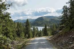 Fin sykkelvei inn til Fjølaset -  Foto: Lars Storheim