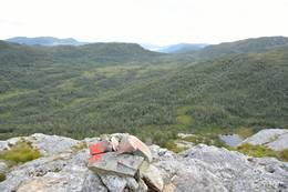 Over tregrensa, utsikt sørover Vikedalen - Foto: Roald Årvik