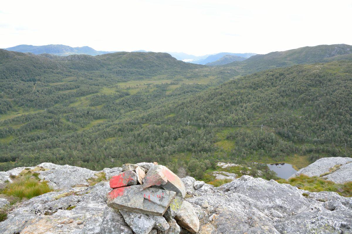 Over tregrensa, utsikt sørover Vikedalen