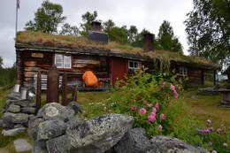 Ljøsnåvollen - Foto: Simon Michalowicz
