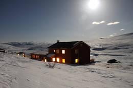 Kalhovd natt vinter -  Foto: Elin Follserås