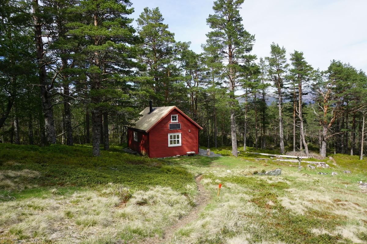 TRIVELIG: Flørlistølen-hytta ligger lunt til i skogen ovenfor Flørli. Selv om regner plasker ned, og vinden suser i tretoppene, er det fortsatt godt å være på Flørlistølen.