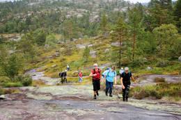 Uvdalen-Heimdal på veg mot Skåkheia -  Foto: AAT