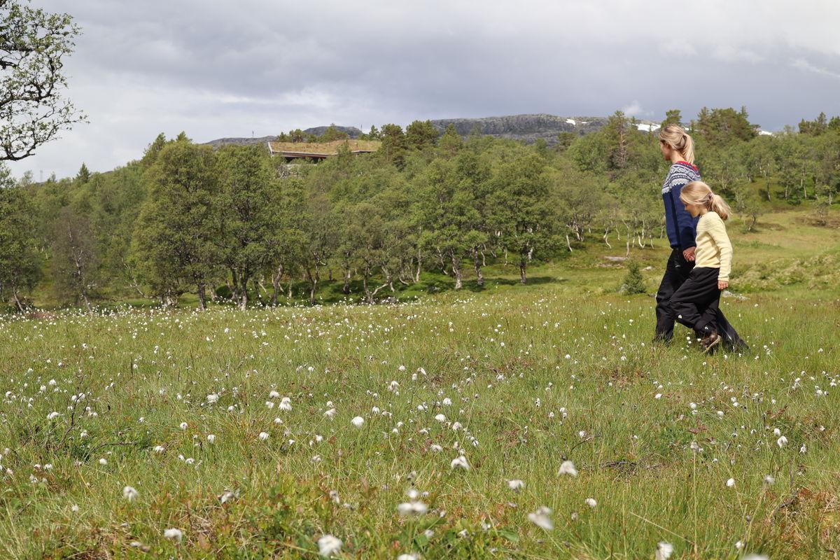 Jonstølen er omgitt av et vakkert landskap.