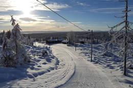 Lageråkvisla november 2016 - Foto: Stein Arne Negård