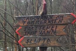 Stikryss ca 1 km etter Dalletjønn: Ta til høyre mot Tømmeråsen - Foto: Ukjent