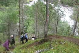 På vei ned til Åmotan fra Lundlia. Bratt ned mot der elvene møtes -  Foto: Birger Blomvik