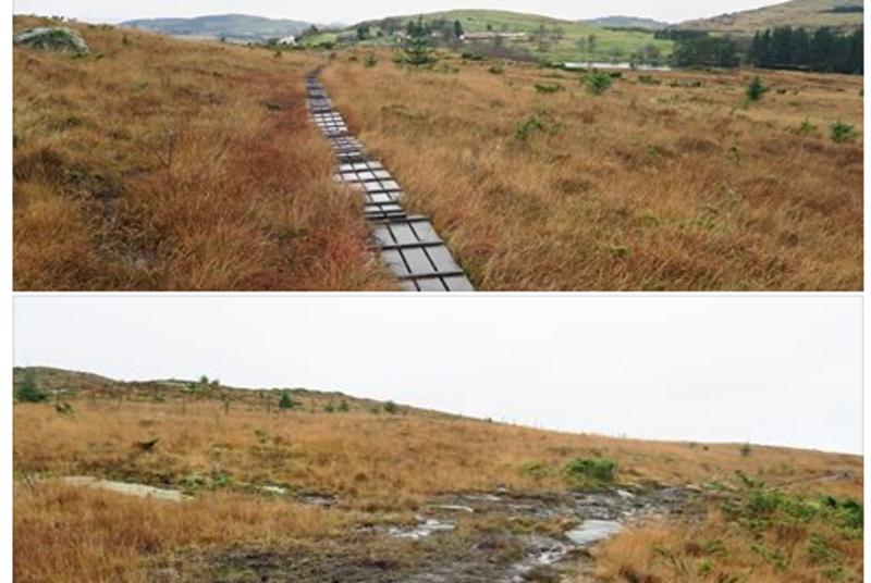 Bilde viser godt hvordan vi med enkle middler kan tilrettelegge litt i naturen på Rennesøy