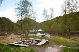 Træet Gård - Foto: Joakim Vatnaland