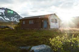 Reinsvassbu august - Foto: Martin Gjellestad