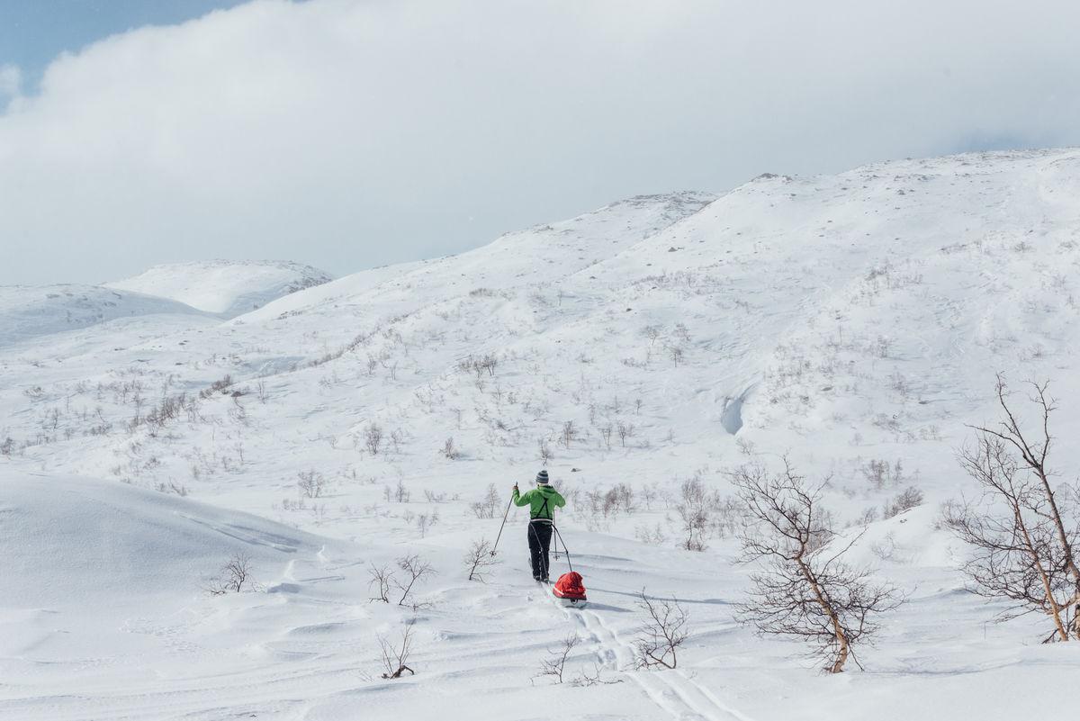 Området rundt Taumevatn har stabile snøforhold i et spennende terreng. Området er kvistet om vinteren.