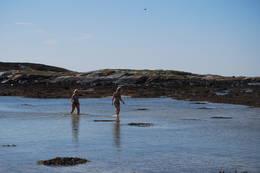 Bading på Karlsøya - Foto: Asgeir Våg