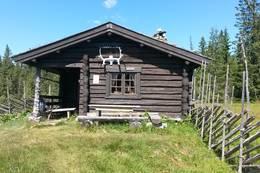 Sommer Øvre Fjellstul - Foto: