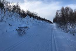 Skiløype på Dovrefjell -  Foto: Øystein Svastuen